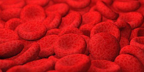 red blood cells background, 3d Illustration